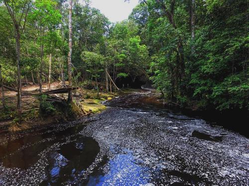Cachoeira do Santuário 2